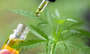 CBD oil, Full spectrum cannabis oil, and CBD e-liquids – differences?